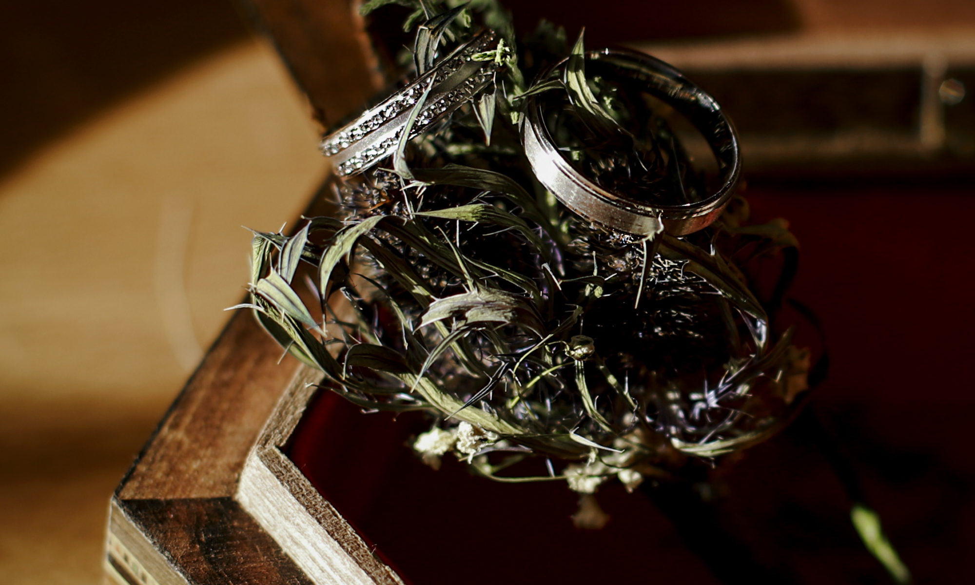 rings bagues mariages photographe auxerre